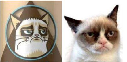 Grumpy Cat wint rechtszaak