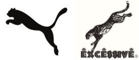 Puma en springende roofdieren